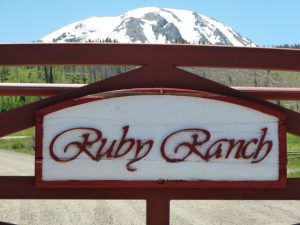 Silverthorne Homes For Sale in Ruby Ranch - Silverthorne CO Real Estate