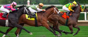 horses racing 2
