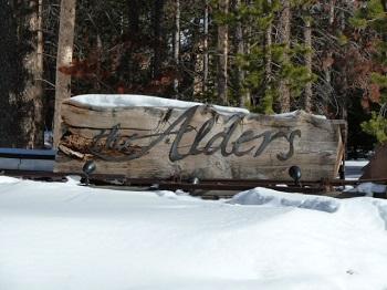 Alders