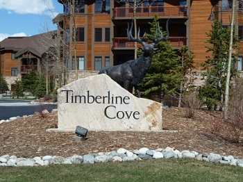 Timberline Cove Condo